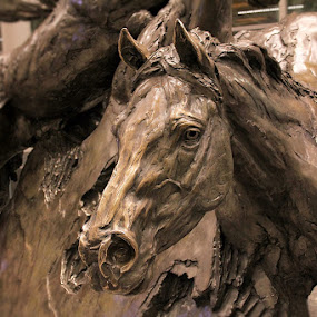 by Lena Arkell - Buildings & Architecture Statues & Monuments ( horse, statue, still life, bronze,  )