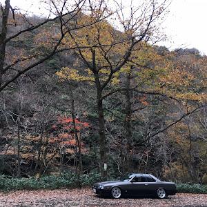スカイライン DR30 1984  DOHC RSのカスタム事例画像 こまっちゃんさんの2018年11月25日22:07の投稿