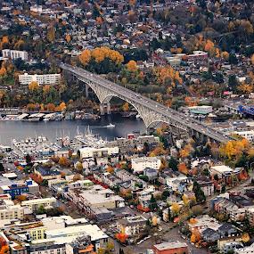 Seattle by Fabienne Lawrence - City,  Street & Park  Vistas ( landscape photography, cityscape, seattle, landscape, arial )