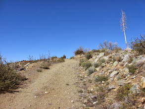 Photo: Almost to the summit of Sunset Peak