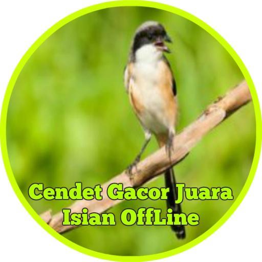 Cendet Gacor Juara Isian Offline