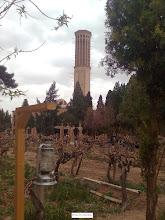 Photo: نمايي از باغ دولت آباد و بادگير آن