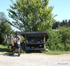 Photo: (Year 2) Day 330 - At Ruckle National Park Farm Stand