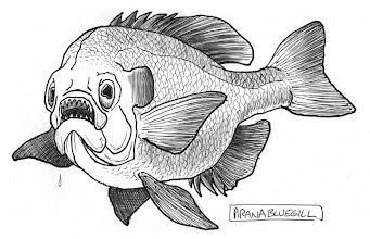 Photo: Bluegill sketch