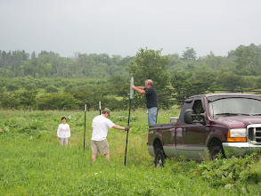 Photo: Raising the first fence