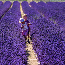 Rows of Lavender Along the Valensole Plateau, Provence, France by Stanley P. - Babies & Children Children Candids