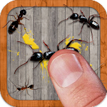 Ant Smasher Free Game Icon