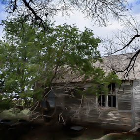 Scary House by Japie Scholtz - Buildings & Architecture Other Exteriors ( roof, clouds, sky, tree, wood, ome, window, branch, house, wall )