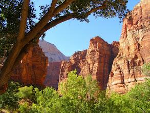 Photo: Zion National Park, UTAH