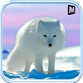 Arctic Fox Simulator 3D