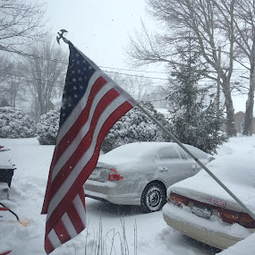 America in snow by Theresa Murray - Novices Only Objects & Still Life ( winter, flag, cold, snow )
