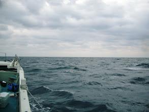Photo: 今日は、いいナギ。 しかし、潮が速ーい!