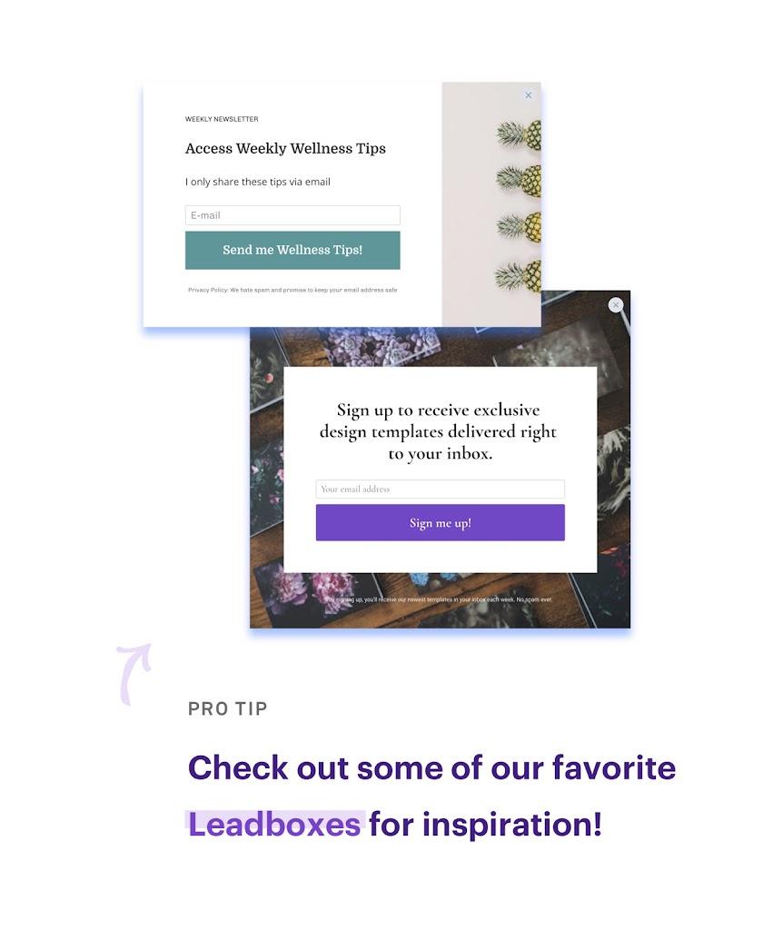leadbox examples