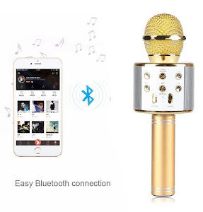 Microfon Karaoke Wireless Bluetooth WS-858