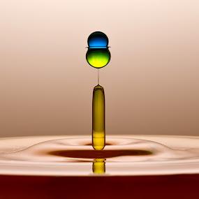 Sherlock by Ganjar Rahayu - Abstract Water Drops & Splashes ( waterdrop )