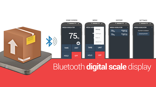 Weight display bluetooth scale