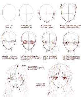 Basic Anime Drawing Steps By Anna Horan Easy Tutorials
