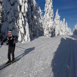 Crosscountryskiing by Luboš Zámiš - Sports & Fitness Snow Sports