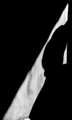 senza luce non c'è ombra di barbelfo