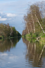 Photo: I'm back from a wonderful #canoeing tour on the river Peene in Eastern Germany. From what I can tell this place is a biodiversity hot spot when it comes to birds, plants and insects. Find all my posts of the canoe tour: #PeeneJune2012