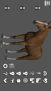 Horse Pose Tool 3D screenshot 0