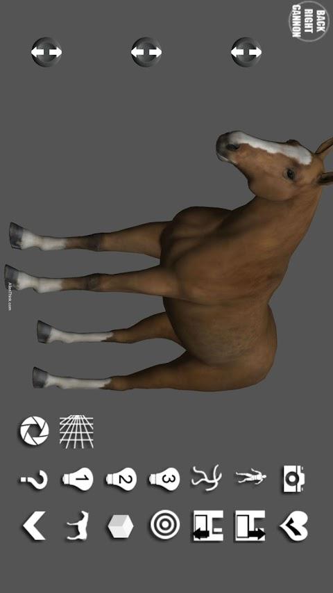 Horse Pose Tool 3Dのおすすめ画像1