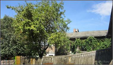Photo: Vedere din curtea casei cu Nr.13 - Mar din curtea casei cu Nr.15 - 2017.09.08