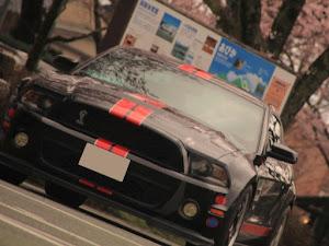 シェルビー  GT500のカスタム事例画像 NAKAKENさんの2020年03月25日20:39の投稿