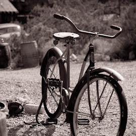 Once the Cream of the Crop by Jodie Lindbo - Transportation Bicycles ( old, bike, black and white, nevada, ghost town, antiques )