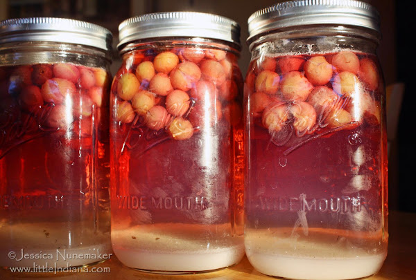 Grandma's Grape Juice Recipe