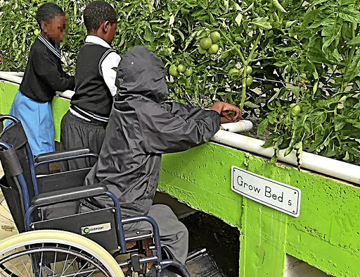 Farming technology aids challenged pupils