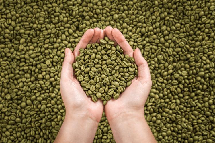uống cafe xanh giảm cân MzPygGozxO0z1DeK3amQAGQVYSXivJB1rMyKEkdeAn3jY3L81pRJ242MtbZuxJrCAJTGkOyxakG1cQGbev6dY4MB65Jcy5EvuRoRDURZkVM3TxqO7r5BFzA0W6NZQya3pew9Wug