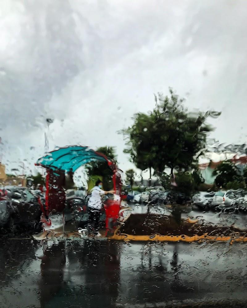 Rain like a paint di tatyana_treus