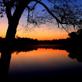 Horizon by Kevin Hill - Landscapes Sunsets & Sunrises ( trees, reflections, lake, sunrise, morning,  )