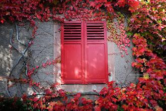 Photo: Red Windowpane