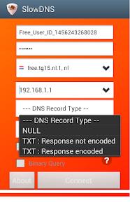 VPN Over DNS Tunnel : SlowDNS - náhled