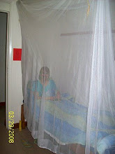 Photo: Bed with mosquito net