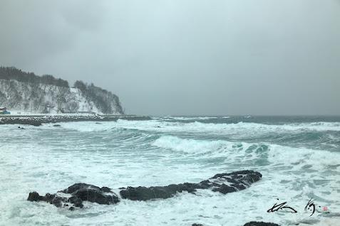 大きく波打つ冷たい海