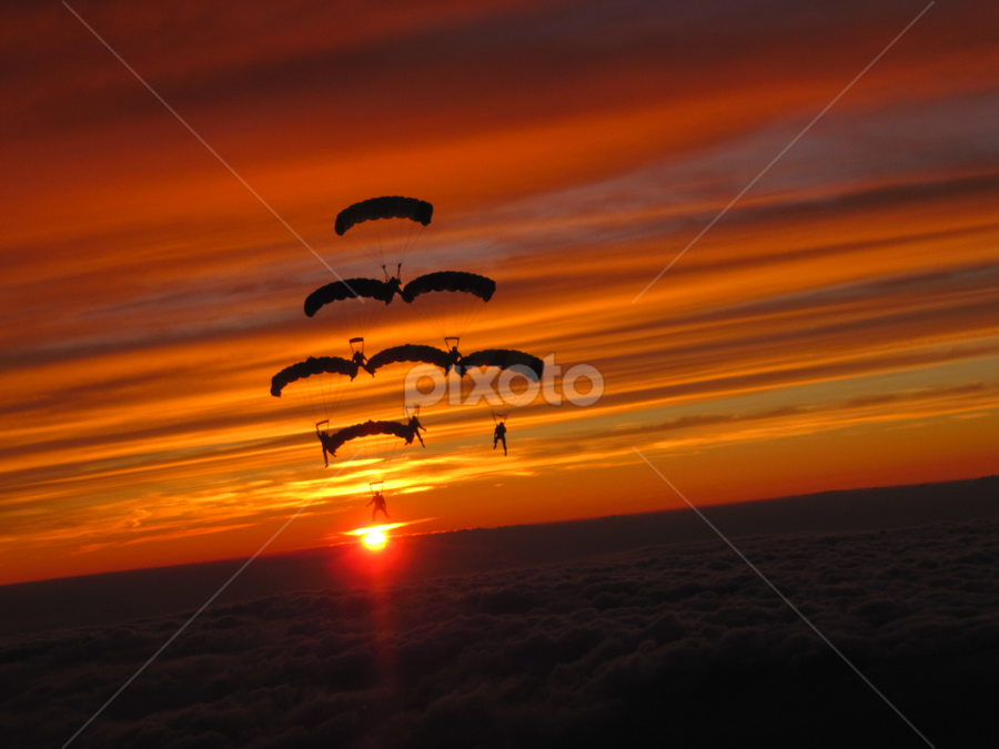 Standing on the Sun by April Schuldt - Sports & Fitness Other Sports ( canopy formation, skydiving, sunset, parachutes, april schuldt )