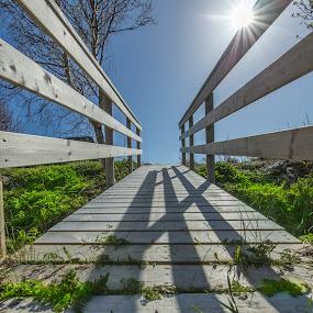 Patterns of bridge by Benny Høynes - Buildings & Architecture Bridges & Suspended Structures ( patterns, wood, bridge, light, sun )