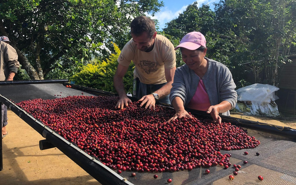 Sasa and a farmer checking cherries