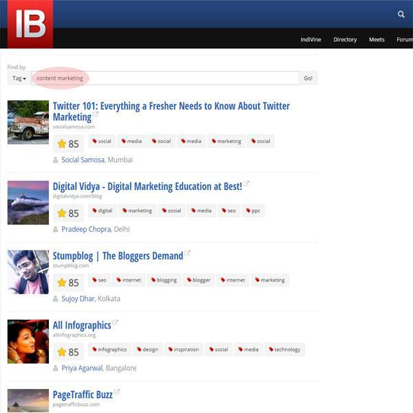 IndiBloggers-search.JPG