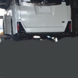 ノア ZRR80W SI g's のマフラーのカスタム事例画像 TOURER.Vさんの2019年01月11日18:35の投稿