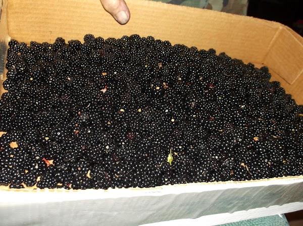Gather and prep ingredients (wash fresh berries etc...)Preheat oveto 400°F.