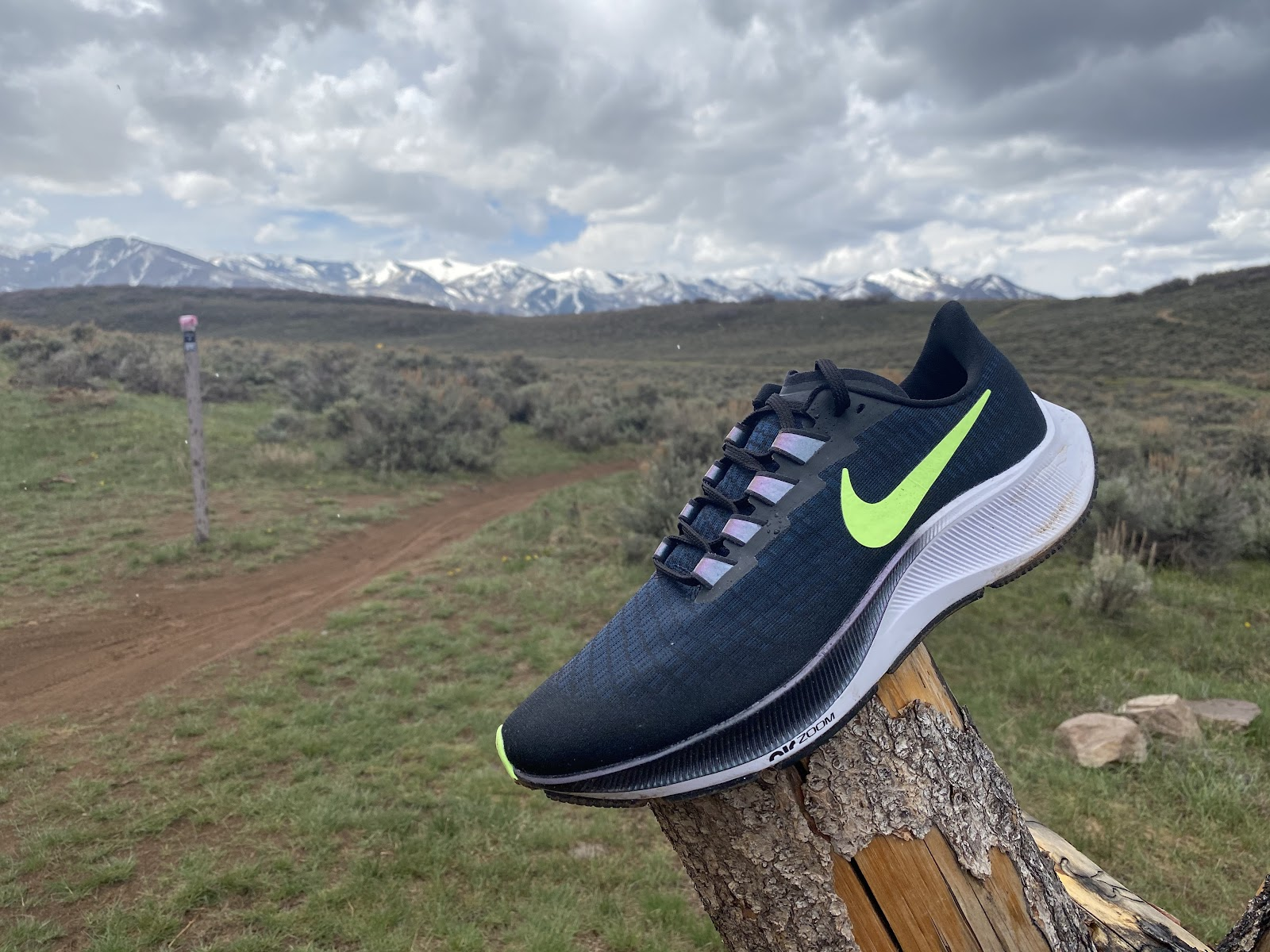 productos quimicos estático Novelista  Road Trail Run: Nike Zoom Pegasus 37 Initial Video Review and Shoe Details