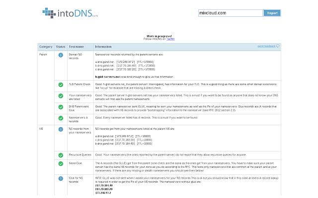 IntoDNS Chrome