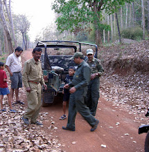Photo: Our jeep was found to have a puncture in the wildlife park