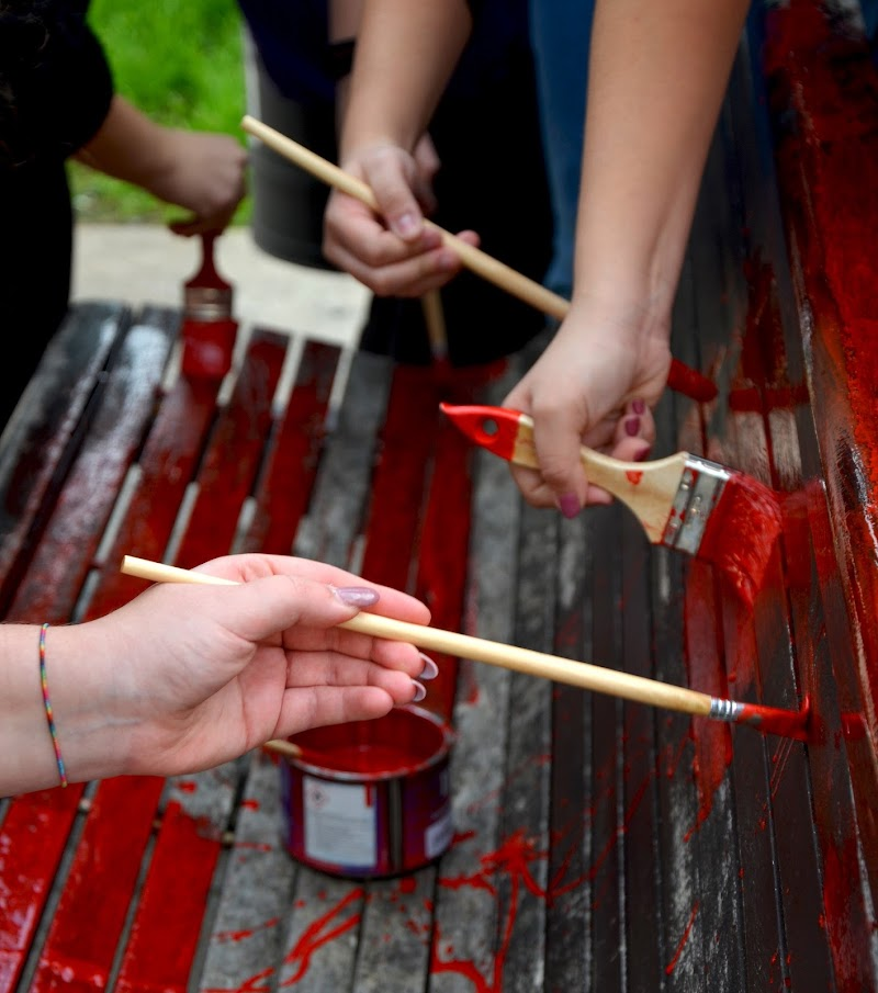 Artistic hands di Primula Vico