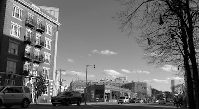 Photo: Looking South down Massachusetts Avenue in Cambridge, MA