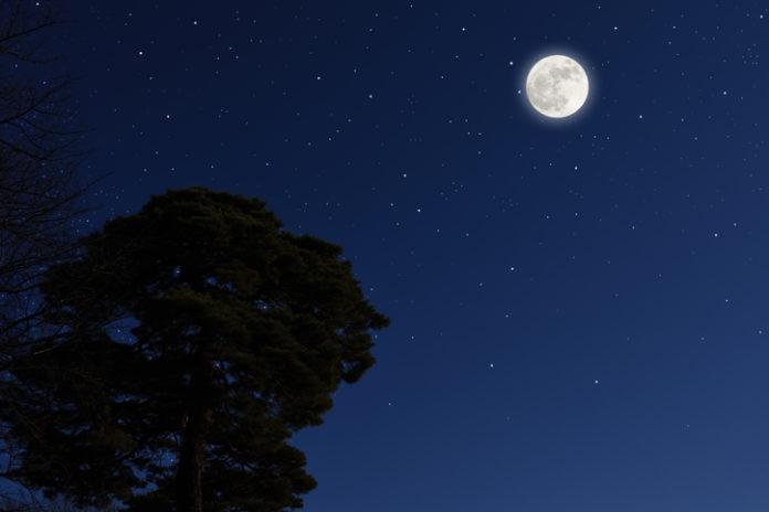 月 が 綺麗 です ね ほか の 種類